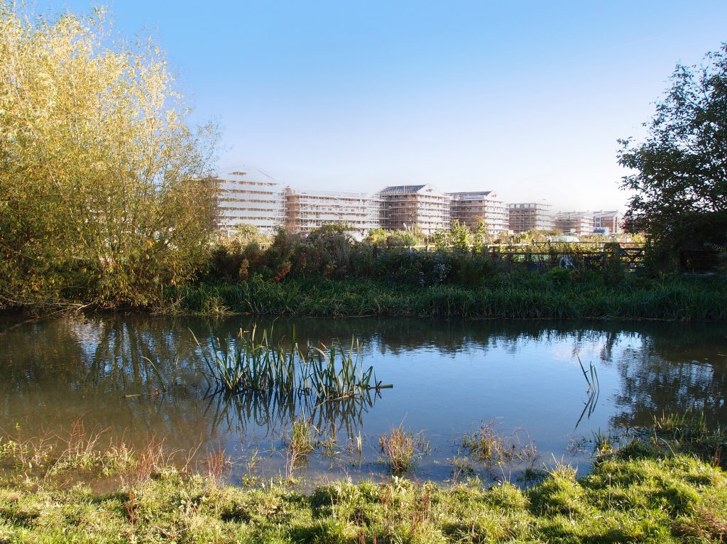 Port Meadow flats