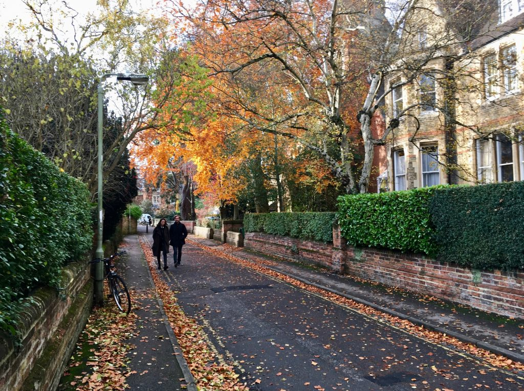 Archetypical Suburban North Oxford